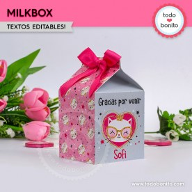 Gatita princesa cool: cajita milkbox